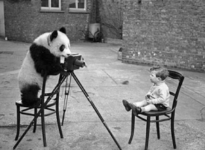 Panda Photo, Bert Hardy, 1938